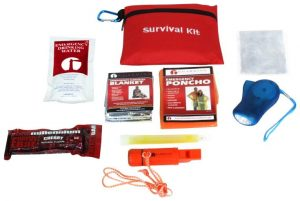 Children's Mini Survival Kit